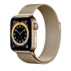 Watch Series 6 40 mm Gold Stainless Steel Case with Milanese Loop